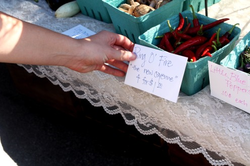 A majority of the produce sold at the Minnetrista Farmers Market are grown by the farmers.
